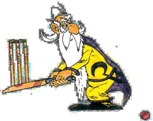 https://druidscricket.com.au/wp-content/uploads/2019/09/druids_cricket_wizard_logo_01.png